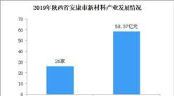 2020年陕西省安康市新材料产业发展现状分析(图)