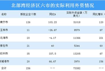 2019年广西北部湾经济区六市的实际利用外资情况(表)