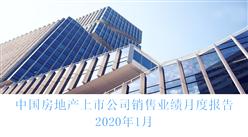 2020年1月中国房地产行业经济运行月度报告(完整版)