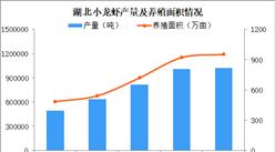 潜江小龙虾复市 2020年湖北小龙虾产业何去何从?(图)