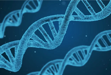 将尽快推动出台生物安全法 全国15个生物产业开发区盘点分析(附名单)