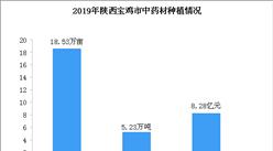 2019年陕西省宝鸡市中药材种植现状分析:产量同比增长9.56%(图)
