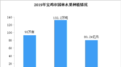 2019年宝鸡市园林水果种植情况分析:猕猴桃产量增长38%(图)
