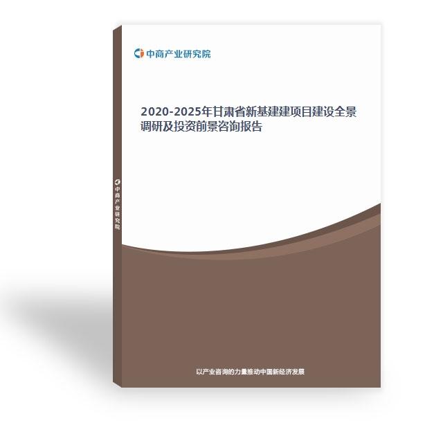 2020-2025年甘肅省新基建建項目建設全景調研及投資前景咨詢報告