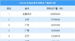 2019年全国各省市饲料总产量排行榜:山东饲料产量遥遥领先(附榜单)