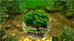 植树节聚力共治生态修复 2020年中国生态修复政策汇总(图)