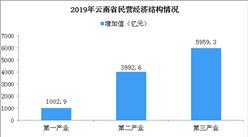 2019年云南民营经济总量实现跨越式增长:完成增加值超万亿元
