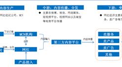 2020年中国网红经济产业链分析及发展前景预测(图)