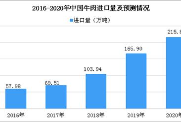 新西兰统计局:中国成为新西兰牛肉最大的出口市场(附数据图)