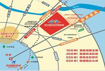 四川国际医药健康城项目案例