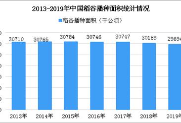 """袁隆平:中国不会出现""""粮荒"""" 近年我国稻谷单产大幅增长(图)"""