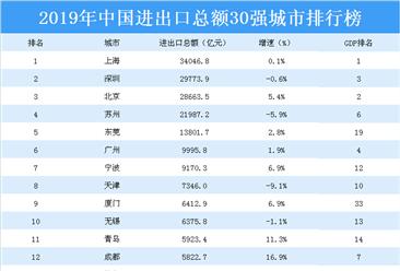 2019年中国进出口总额30强城市排行榜