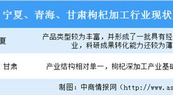 2020年中國枸杞加工行業現狀及競爭格局分析(圖)