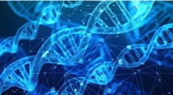 精准医疗成大健康行业未来发展新风口 2020年精准医疗产业链上中下游分析