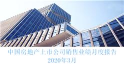 2020年3月中国房地产行业经济运行月度报告(完整版)