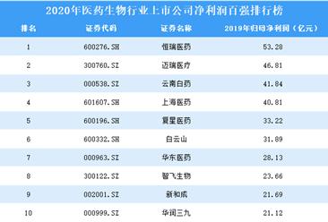 2020年医药生物行业上市公司净利润百强排行榜