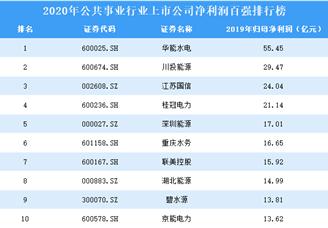 2020年公共事业行业上市公司净利润百强排行榜