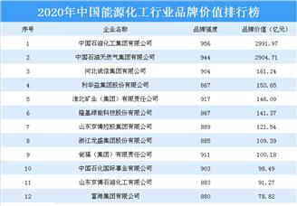 2020年中国能源化工行业品牌价值排行榜