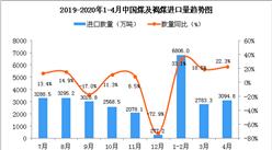 2020年4月中国煤及褐煤进口量为3094.8万吨 同比增长22.3%