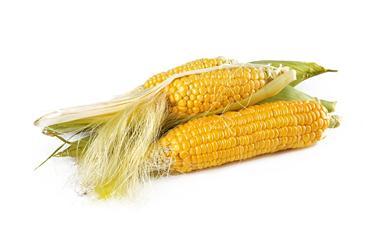 2020年12月玉米市场供需形势分析:预计国内价格趋于稳定