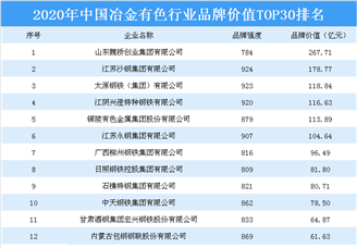 2020年中国冶金有色行业板材价值TOP30排行榜
