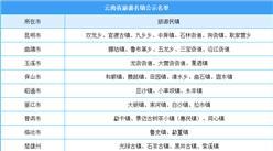 云南省旅游名鎮公示名單出爐:共67個旅游名鎮(附完整名單)