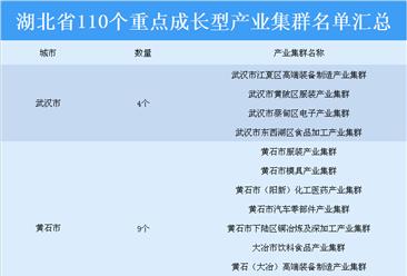 招商引资必看!湖北省110个重点成长型产业集群汇总一览(表)