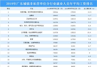 2019年广东城镇非私营单位分行业就业人员年平均工资排行榜