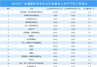2019年广东城镇私营单位分行业就业人员年平均工资排行榜
