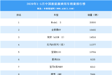 2020年1-5月新能源乘用车销量排行榜