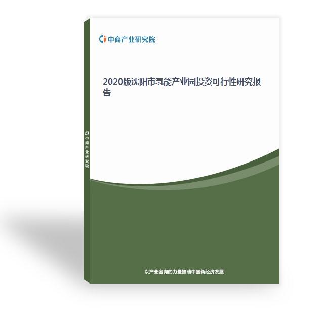 2020版沈阳市氢能产业园投资可行性研究报告