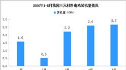 2020年1-5月动力电池装机量情况:三元电池装机量累计9.6GWh