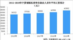 2019年宁夏城镇私营单位就业人员工资情况:年平均工资43892元