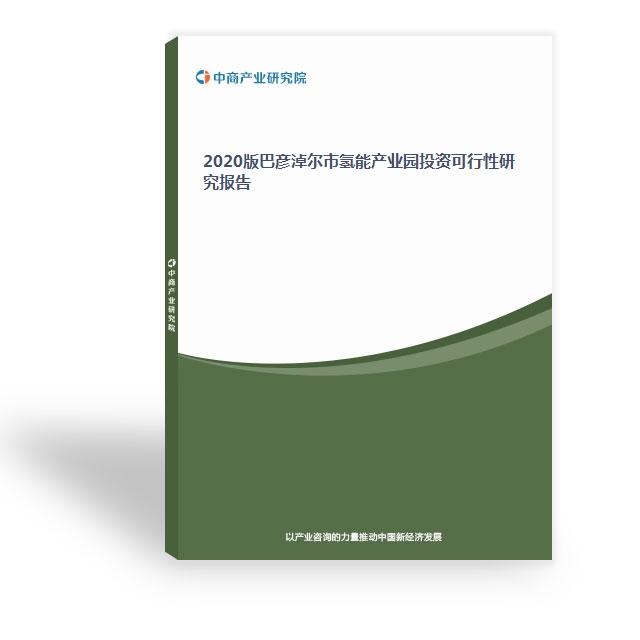 2020版巴彦淖尔市氢能产业园投资可行性研究报告