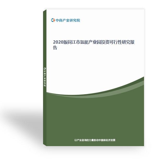 2020版同江市氢能产业园投资可行性研究报告