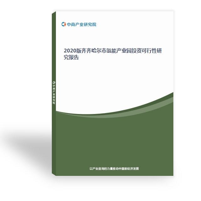 2020版齐齐哈尔市氢能产业园投资可行性研究报告