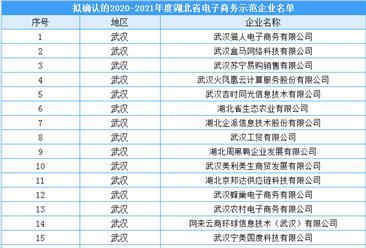 湖北省2020-2021年度电子商务示范企业拟入选名单出炉:共70家企业