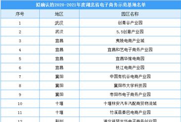 2020-2021年度湖北省电子商务示范基地公示名单出炉(附完整名单)