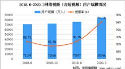 2020年网络视频行业用户规模分析及未来发展趋势预测(图)