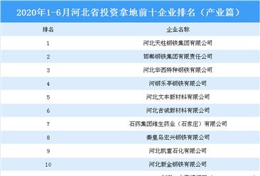 产业地产投资情报:2020上半年河北省投资拿地前十企业排行榜(产业篇)