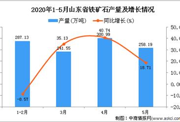 2020年1-5月山东省铁矿石产量为1054.69万吨 同比增长16.41%