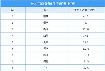 2019年全国各省市干毛茶产量排行榜:福建干毛茶产量全国第一(附榜单)
