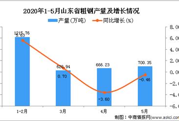 2020年5月山东省粗钢产量同比增长0.8%