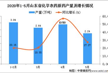 2020年5月山东省化学农药原药产量及增长情况分析