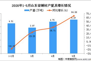 2020年1-5月山东省铜材产量为18.04万吨 同比增长17.99%