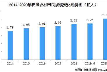 2020年我国农村网民规模增至2.55亿  农村互联网普及率达46.2%(图)