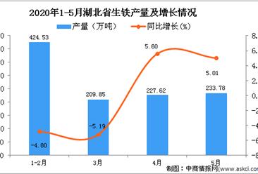 2020年1-5月湖北省生铁产量同比下降0.87%