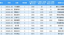 2020年中國上市企業增發計劃投入募集資金排行榜 TOP100