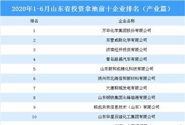 产业地产投资情报:2020上半年山东省投资拿地前十企业排行榜(产业篇)