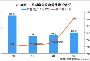 2020年5月湖南省发电量及增长情况分析